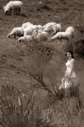 Ciobanas cu 300 de oi